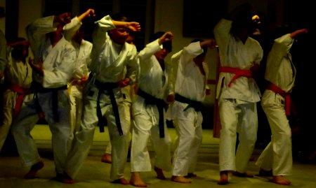 Karatekämpfer des TSV