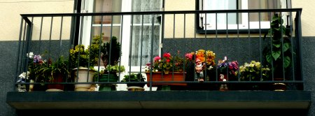 Balkon mit Gartenzwerg