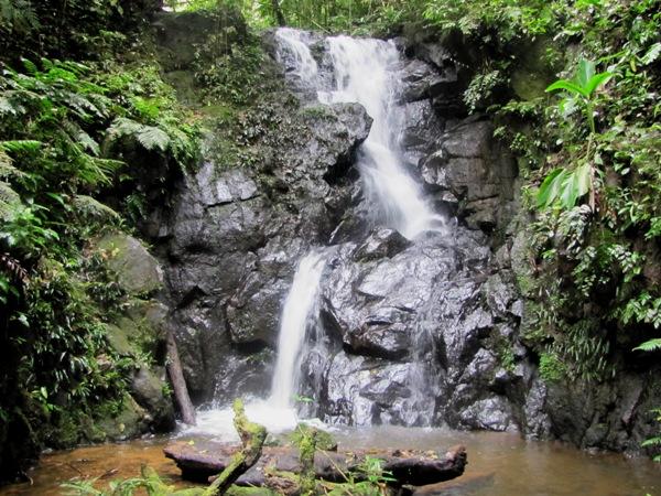 2011_10_12_02_kolibriwasserfall