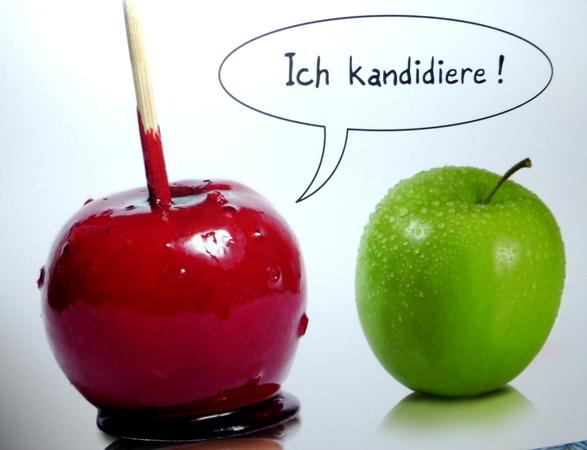 130822_Ich_Kandidiere_kl
